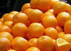 عرضه جدیدترین کنسانتره پرتقال