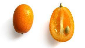 تولید کننده انواع کنسانتره پرتقال